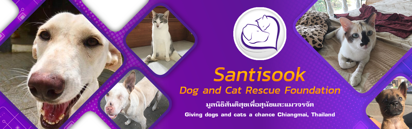 Santisook dog and cat rescue foundation